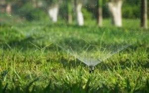 arrosage-pelouse